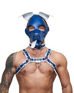 Mister B Leather Floppy Dog Hood Circuit – Blue-White