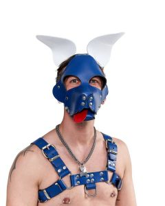 Mister B Leather Shaggy Dog Hood Circuit – Blue-White