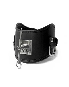 Mister B Posture Collar with Stainless Steel Pin