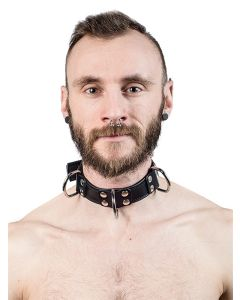/m/i/mister-b-leather-slave-collar-4-d-rings-black-610680-f.jpg