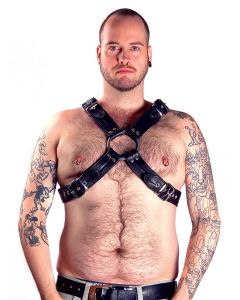 Mister B Leather The Bear Harness Top