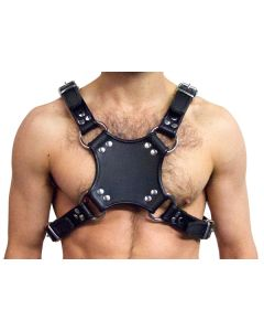 Mister B Leather Walking Harness Black-Black