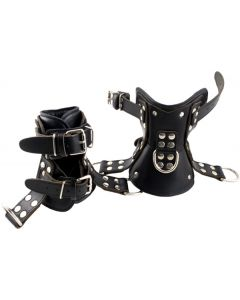 Mister-B-Premium-Ankle-Suspension-Restraints